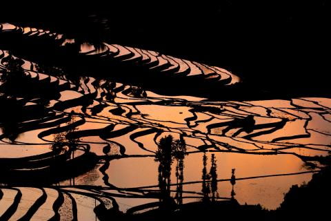 Sunset in South China
