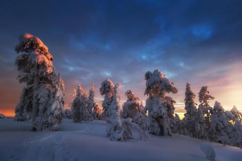 Finnischer Wintertraum