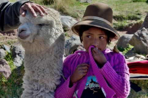 Kind mit Alpaka