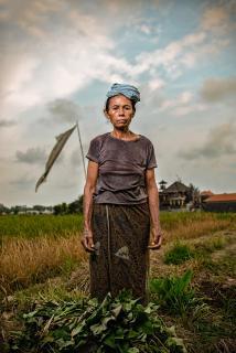 INSIDE BALI - Woman on Field