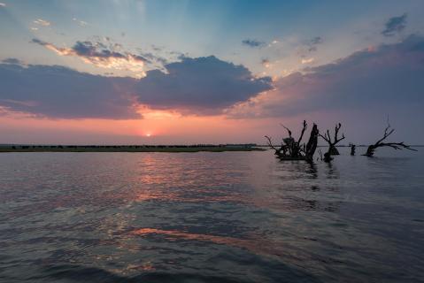 Sunset am Chobe