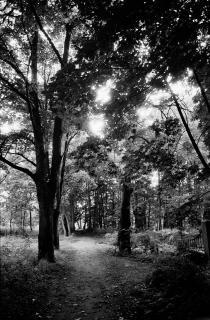 Wiehbergpark
