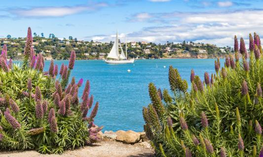 Sausalito an der Bucht von San Francisco