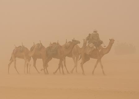 Wegsuche im Sandsturm