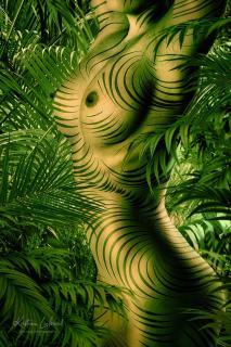 chameleon jungle nude art (Bodypainting, Palmen, Aktfoto)