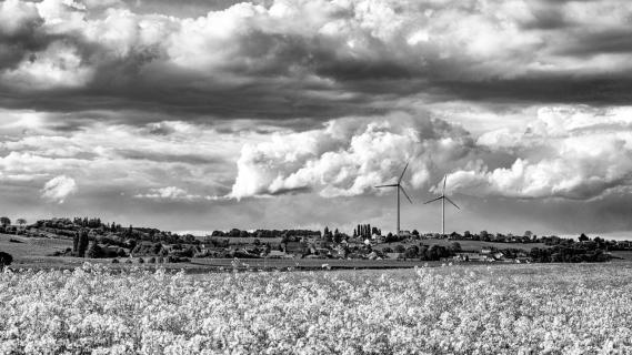 Rheinhessen schwarz/weiß