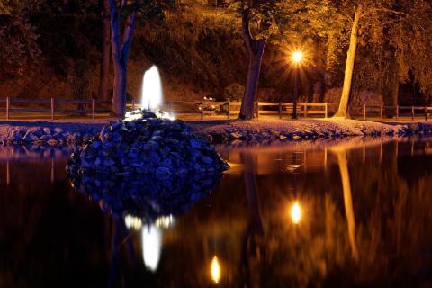 Stadtweiher bei Nacht