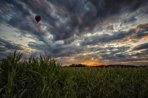 Sonnenuntergang Ballon
