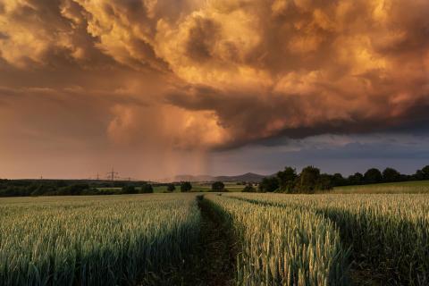 Porträt einer Gewitterwolke