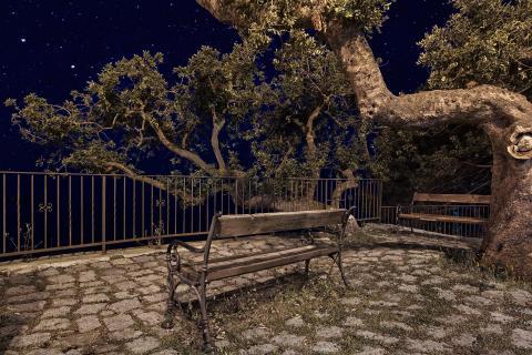 Sardische Nacht