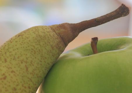 Birne und Apfel