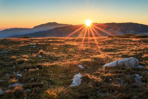 Morgensonne auf der Alm