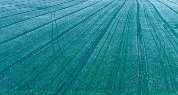 Feldlinien