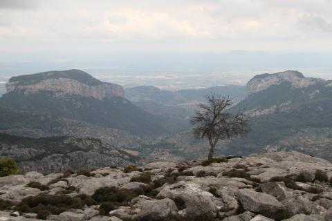 Mallorca Tramuntana