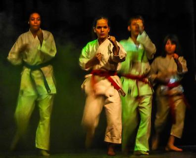 Kampfsport-Demonstration
