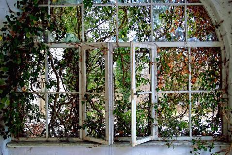 Stillleben mit Fenster