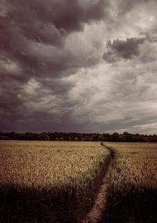 Dramatic fields