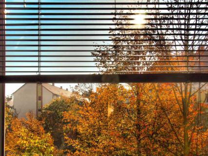 40_Herbst_vor-dem_Fenster_A. Mühle