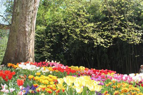 07 Frühling_Anja_Wurtz