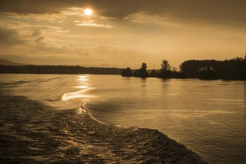 Abendstimmung an der Donau IMG 1341