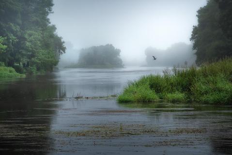 morgens am Fluß