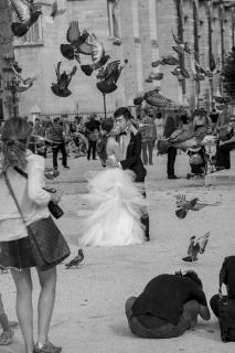 Hochzeit mit Tauben