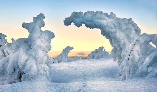The frozen Gate