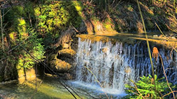 2017 03 05 SNY02853_Bach_Wasserfall_Lenggries_01