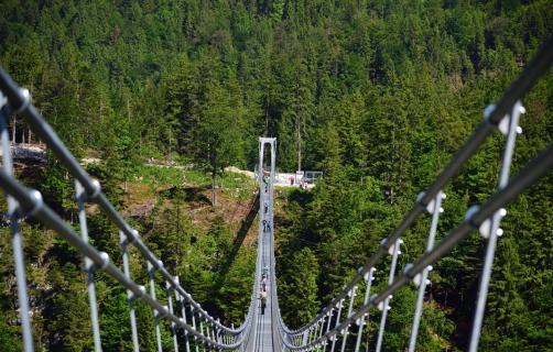 Skywalk Brücke Reute Ehrenburg AAA 3464 510