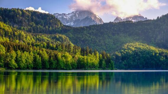 20190526 Alpsee Füssen Robert Kukuljan FUJD8703 2