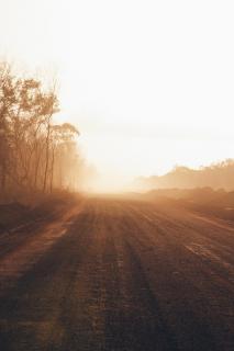 39 Herbst im Nebel_Tobias_Paul(3)