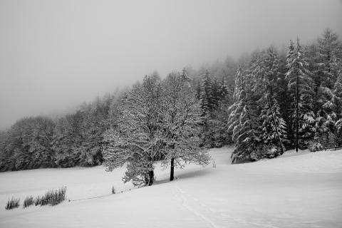 52_Fotografieren-Sie-Ein-Winterbild!_Tobias_Paul