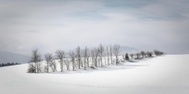 52 Fotografieren sie ein Winterbild_Ingrid_ Hofbauer