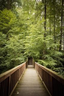 Der Weg in die Natur.