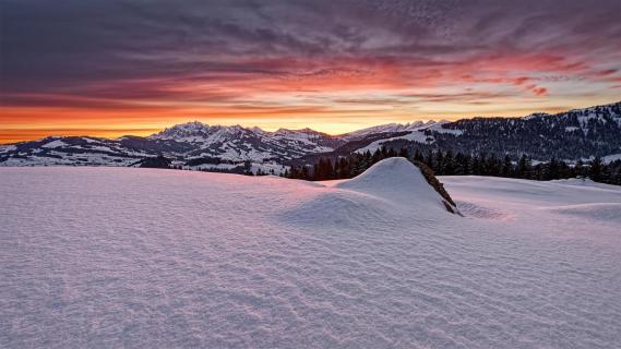 20210215 Sunrise_Nestenberg