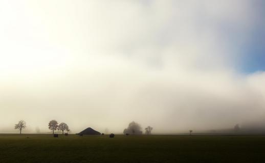 39_Herbst im Nebel_pit.rank_43010