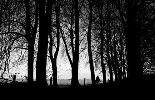 Auf der Suche nach dem Licht