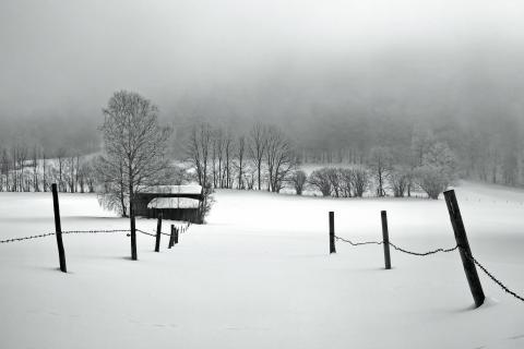 52_Fotografieren Sie ein Winterbild_pit.rank_43010