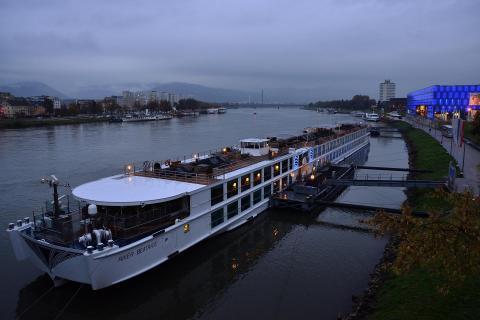 Donaugrau
