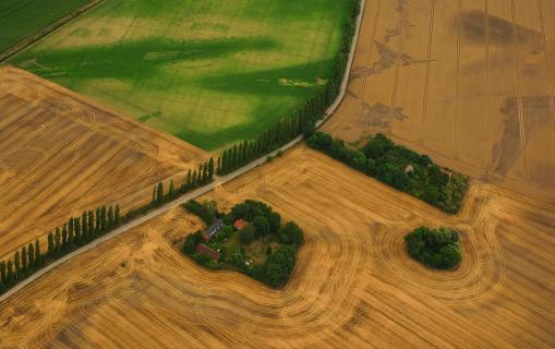 Brandenburger Felder