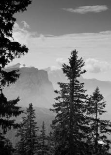 Blick vom Lattengebirge auf die Reiteralm