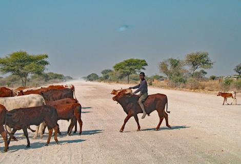Namibia-Cowboy