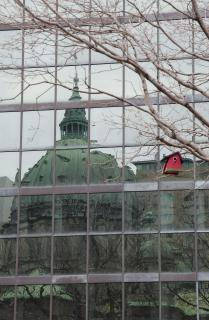 Cathedrale Marie-Reine-du-Monde, Montreal