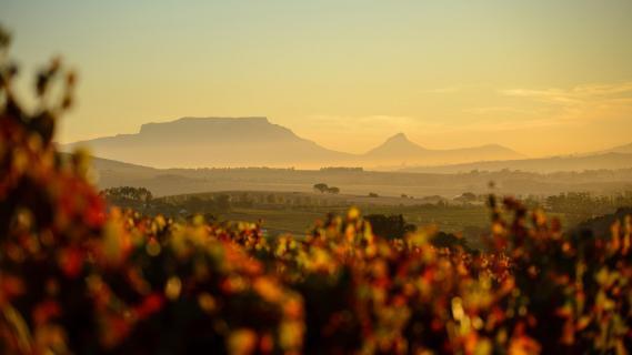 View to Table Mountain