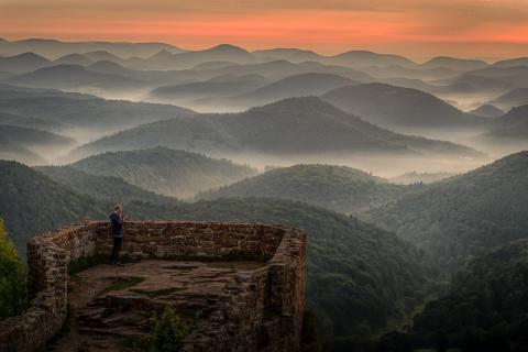 Sonnenaufgang in der Pfalz