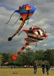 Drachenfest Potsdam