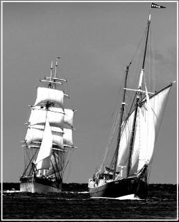 Weiße Segel hart am Wind