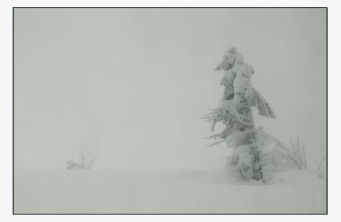 Winterweihnacht auf dem Brocken