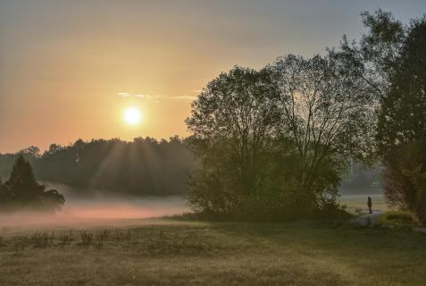 Morgenspaziergang im Herbst