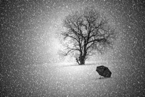 Regenschirm im Schnee